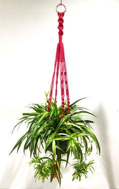 RED MACRAME PLANT HANGER