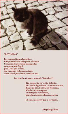 É bom recordar os animais que marcaram, de uma maneira ou de outra, a nossa vida. Jorge Magalhães traduziu este sentimento nesta poesia.