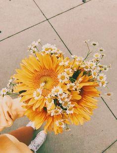 Daisies and sunflower - Pflanzen Aesthetic Backgrounds, Aesthetic Iphone Wallpaper, Aesthetic Wallpapers, Flower Aesthetic, Spring Aesthetic, Boho Aesthetic, Aesthetic Yellow, No Rain, Photo Wall Collage