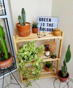 Indian Home Decor .Indian Home Decor Quirky Home Decor, Indian Home Decor, Handmade Home Decor, Cheap Home Decor, Diy Home Decor, Small Balcony Decor, Small Room Decor, House Plants Decor, Plant Decor