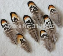 Wholesale price!100pcs/lot Beautiful natural pale - brown pheasant feather 3-4 inch Plumes Performance Plume for decoration KX16(China (Mainland))