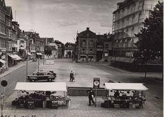 Bongerd 1951