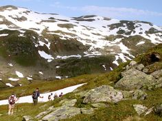 Mountains, Glaciers, and Fjords, Norway - Flatbreen Hike