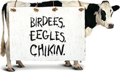 Fast forward 20 years and today the boisterous bovines of the Eat Mor Chikin cow campaign are still at it finding creative ways to encourage humans to eat chicken not beef. Cow Png, Eat Mor Chikin, Cow Clipart, Cow Appreciation Day, Chick Fil A Sauce, Michelle Malkin, My Favorite Food, My Favorite Things, Cow Pictures