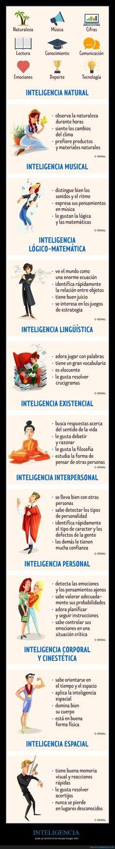 Distintos tipos de inteligencia