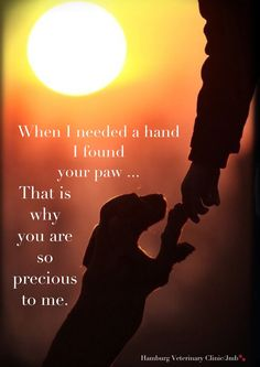 A dog's love ... When I needed a hand I found your paw. That is why you are so precious to me.