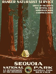 ** An vintage retro-filled travel poster featuring an illustration what camping looks like in Sequoia National Park, with the Sequoia trees towering over the Vintage Advertising Posters, Vintage Travel Posters, Vintage Advertisements, Poster Vintage, Vintage Prints, Sequoia National Park, National Parks, Wpa Posters, Poster S