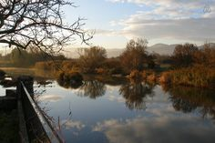 El otoño llega a Atostarra (En el centro de Navarra 2+1 pax. J. - Cendea de Olza, Navarre, Espanha)