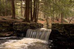 Pretty waterfall in Natick woods New England Foliage, Twilight Saga, Natural World, Storytelling, Past, Waterfall, Wildlife, Massachusetts, Places
