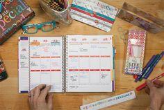 classic life planners : Erin Condren