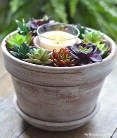 Einfaches und billiges DIY-Projekt: Dollar Tree Succulent Candle Centerpiece 6 - Projectgarde...