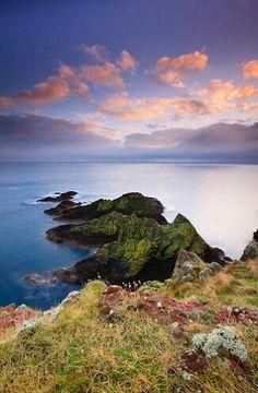 St. Abbs Head, St. Abbs, East Lothian, Scotland