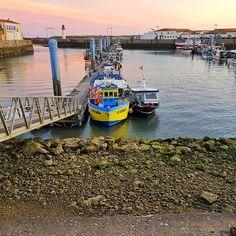 """Ballade nocturne sur le port de la Cotinière.  #instamoment #io #oleron #family #pregnancy #port #sunset #dinner #travelblogger #travel"" by @mimideas14. #fashionbloggers #bbloggers #fbloggers #blogs #bblogger #beautyblog #beautybloggers #instagramers #roadtrip #여행 #outdoors #ocean #world #hiking #lonelyplanet #instacool #instafollow #like4follow #spamforspam #likeforlikes #spam4spam #likes4likes #recent4recent #recentforrecent #followtrain #like4likes #gainpost #s4s #r4r #20likes #lfl…"