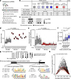 Epigenetic evolution and lineage histories of chronic lymphocytic leukaemia