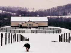 Get Your Fence, Stalls, and Barn Ready Before Winter Arrives