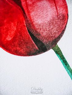 tulip illustration by dushky | #artwork #illustration #watercolor #flower #tulip #red #tattoodesign #dushky