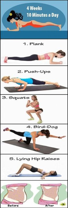1. plank= 30 seg 2. push-ups= 20 seg 3. squats= 2 repeticiones de 15 4. bird-dog=3 repeticiones de 10 cada lado 5. lying hip raises= 30