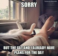 SORRY BUT THE CAT AND I ALREADY HAVE PLANS FOR THE DAY