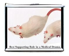 Rats, best supporting role in a medical drama!  Poor babies!