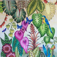 Take a peek at this great artwork on Johanna Basford's Colouring Gallery! Coloring Book Art, Leaf Coloring, Colouring Pages, Adult Coloring, Magical Jungle Johanna Basford, Joanna Basford, Secret Garden Colouring, Johanna Basford Coloring Book, Colored Pencil Techniques