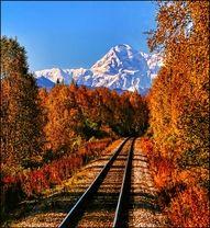 Wilderness Railroad Alaska, Mt. Mckinley.
