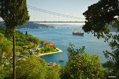İstanbul boğazı. Mihrabad korusu. Turkey. Fotograf: Emin Küçükserim