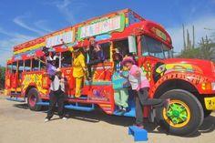 Kukoo Kunuku Party Bus
