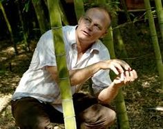 Image result for joerg stamm bamboo