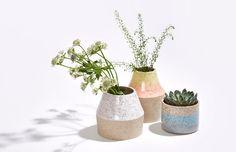 Lindsey Hampton / Ceramics