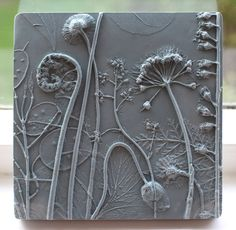 She does this by creating plaster casts of the plants.