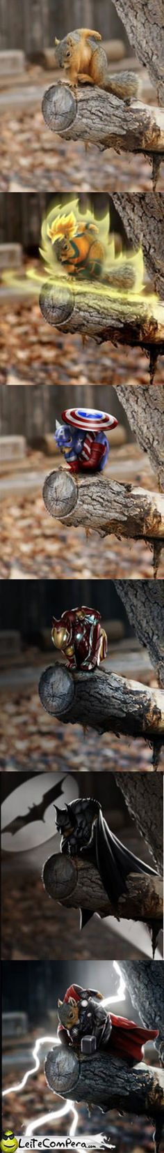 O esquilo super herói