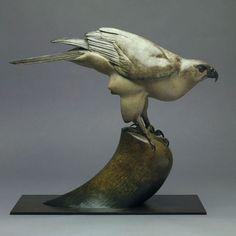 Bronze Birds Sculptures or statue by artist Nick Bibby titled: 'Goshawk (bronze life size Goshawk Perched Bird of Prey statue/sculpture)'