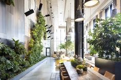 Check Out This Brooklyn Hotel's Dramatic Living Wall Installation - Dwell