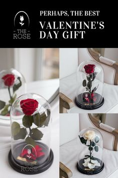 Wedding Gifts Wholesale Christmas The Little Prince Glass Cover Preserved Rose Flower Immortal Red Roses For Valentines Day
