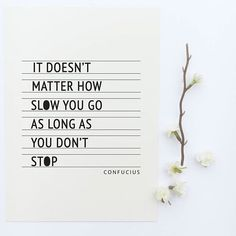 It doesn't matter how slow you go as long as you don't stop - Confucius