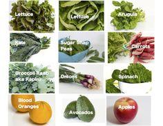 Regular Size: lettuce, arugula, kale, sugar snap peas, carrots, broccoli raab aka rapini, bunching onions, spinach, blood oranges, avocados, apples   Small