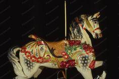 Glen Echo Dentzel Carousel Horse 24b 1920s 4x6 Reprint Of Old Photo
