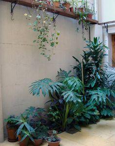 Interiores #67: Una primera vez   Casa Chaucha