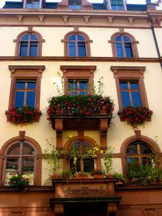Beautiful window boxes!! @stylebytiffani