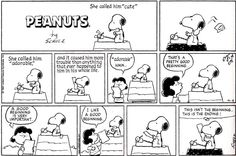 """I love Snoopy and I love writing. How could I not have known about """"Snoopy's Guide to the Writing Life"""" it would have made teaching Creative Writing 201 SO much easier. Writing Humor, Writing Quotes, Writing Advice, Writing Resources, Writing Lessons, Writing Ideas, Snoopy Comics, Cute Comics, Snoopy Quotes"""
