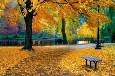 Public Garden Boston, MA