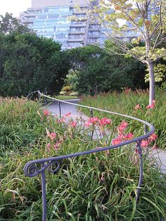 hand rails at the Music Garden