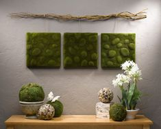 DIY Wall Art Tutorial: Mossy Wall Art adds Zen to your day