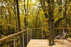 wdrzewach.pl - apartamenty w drzewach lessowych wąwozów