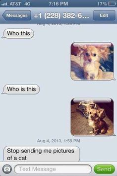 The Mysterious Animal: | 26 Texts You Need To See Before You Die omg I dyed. Oops silly Potato Wrong Number Texts, Savage Texts, Lost, Me Quotes, Hilarious, Sayings, Humor, I Laughed, Animals