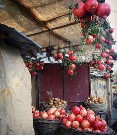 Persia Pomegrante