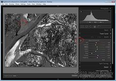 Many of the features in the Lightroom 3 Develop module have targeted adjustment tools available to help you make the adj. Lightroom 3, Lightroom Tutorial, Photoshop Tips, Laptop Photography, Digital Photography School, Photography Tips, Advanced Photography, Photo Editing, Editing Photos