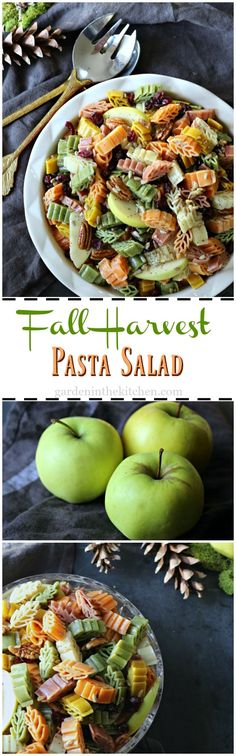Fall Harvest Pasta Salad; this quick and easy deliciously festive dish is made with fresh seasonal ingredients to bring a little fun and celebration to your daily meals