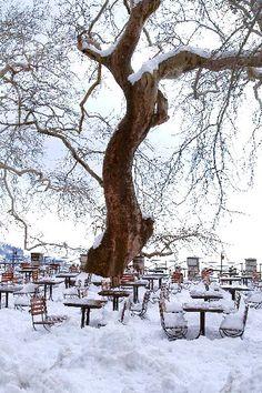 Bild von einem Dorfplatz auf dem Berg Pelion...