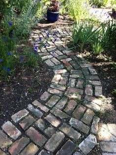 Love this Pinner's brick path! Our newly purchased forty-one year old home, which I promptly named Magnolia House, was built in The exterio. Cottage Garden Design, Cottage Garden Plants, Herbs Garden, Garden Planters, Brick Pathway, Red Brick Paving, Paver Path, Old Bricks, Brick Patios
